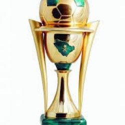 كأس خادم الحرمين الشريفين 2014-2015