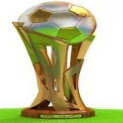 كأس سمو ولي العهد 2014 - 2015