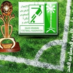 دوري كأس الأمير فيصل بن فهد 2014-2015