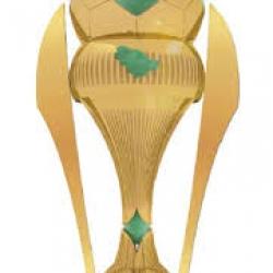 كأس ولي العهد 2015-2016